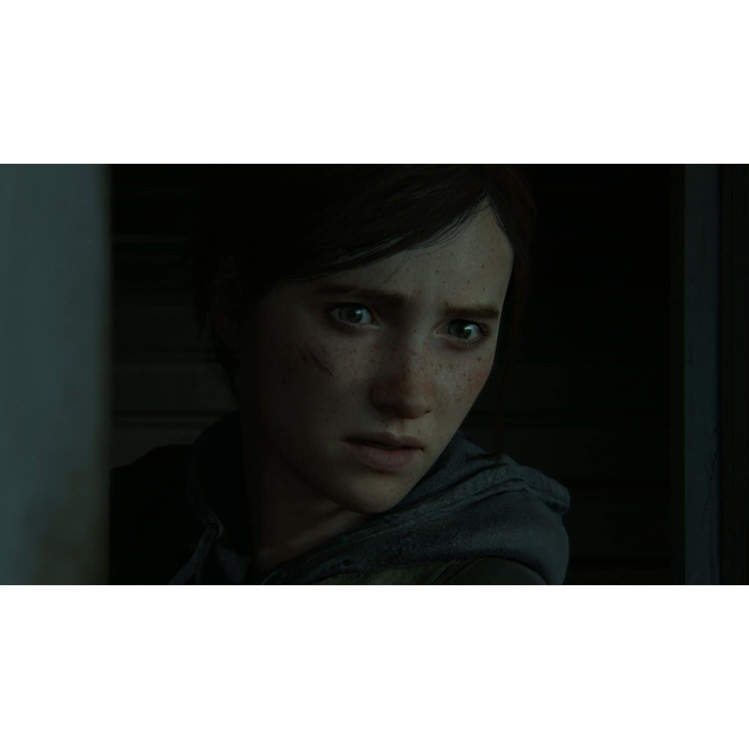 Gra PS4 The Last of Us Part II