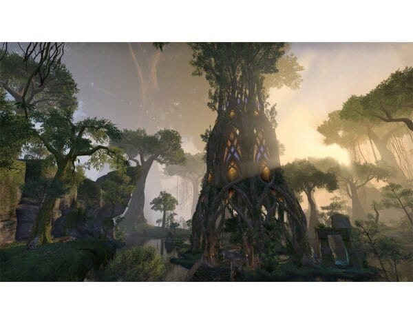 Gra PS4 The Elder Scrolls Online: Morrowind